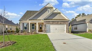 Photo of 7231 Red Maple Court, Flowery Branch, GA 30542 (MLS # 6617695)