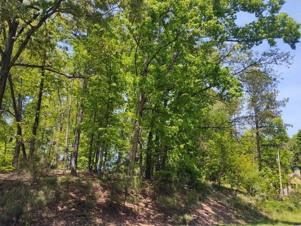 Photo of 840 Whitehead Rd, Sugar Hill, GA 30518 (MLS # 6876723)