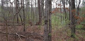 Photo of 9 Bear Creek Drive, Big Canoe, GA 30143 (MLS # 6122750)