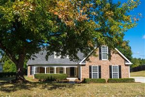 Photo of 164 RENDITION Drive, Mcdonough, GA 30253 (MLS # 6634773)