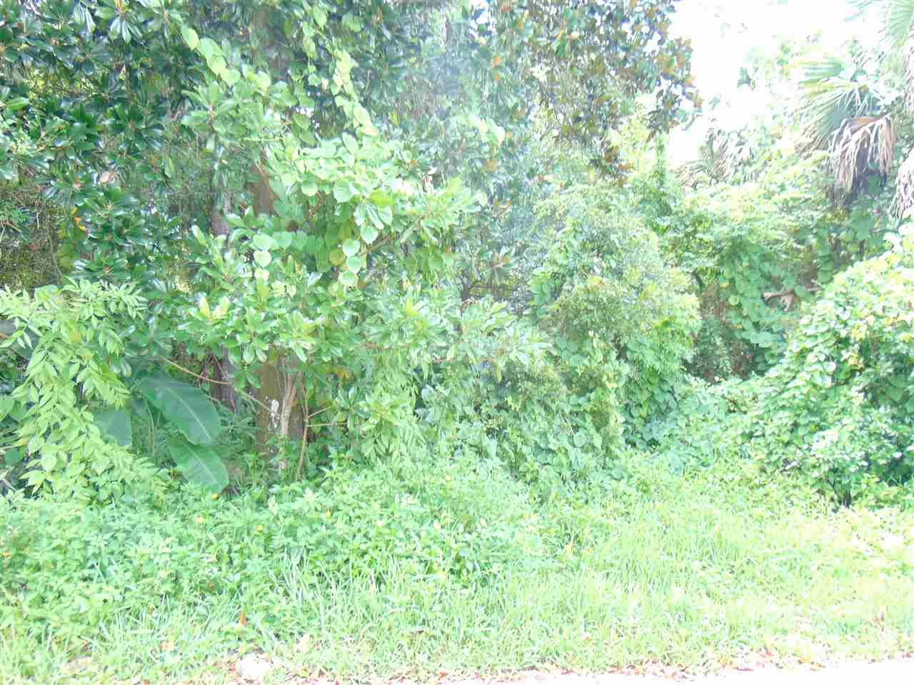 Photo of 0 HYBISCUS AVE., St Augustine, FL 32084 (MLS # 215312)