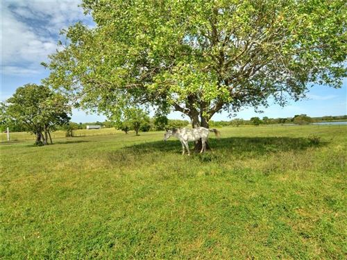 Photo of 760  CR 413 A Tract 5, Waelder, TX 78959 (MLS # 3197462)