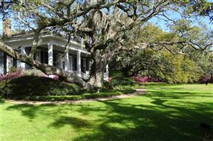 Photo of 17655 Scenic Highway 98, Fairhope, AL 36532 (MLS # 274683)