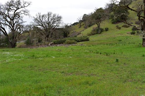 Photo of 1170 Mcnab Ranch Road, Ukiah, CA 95482 (MLS # 21813026)