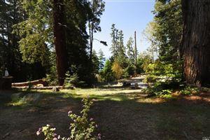 Tiny photo for 22165 Umland Circle, Jenner, CA 95450 (MLS # 21816065)