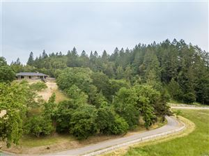 Photo of 6880 Giovanetti Road, Forestville, CA 95436 (MLS # 21910141)