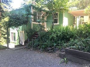 Photo of 15888 Wright Lane, Guerneville, CA 95446 (MLS # 21916161)