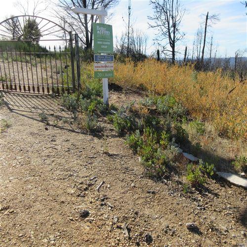 Photo of 4650 Cavedale Road, Glen Ellen, CA 95442 (MLS # 21905329)
