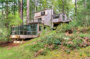 Photo of 35170 Timber Ridge Road, The Sea Ranch, CA 95497 (MLS # 21826356)