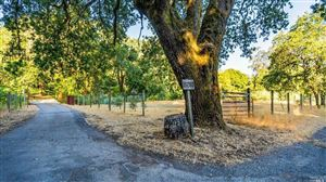 Photo for Calistoga, CA 94515 (MLS # 21918362)