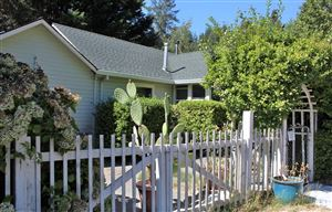 Photo of 17480 Orchard Avenue, Guerneville, CA 95446 (MLS # 21924378)