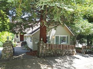Photo of 539 Cleveland Avenue, Sebastopol, CA 95472 (MLS # 21912389)