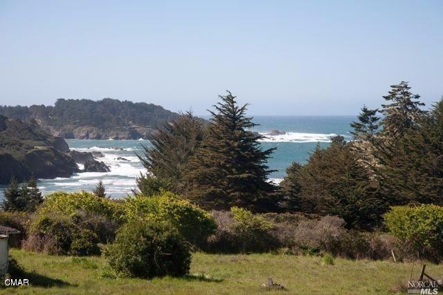 Photo for 44711 Pine Street, Mendocino, CA 95460 (MLS # 21725426)