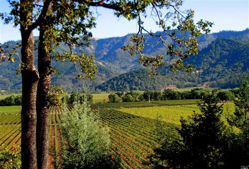 Photo of Calistoga, CA 94515 (MLS # 21922439)