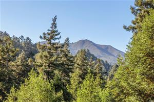 Photo of 88 Cypress Avenue, Mill Valley, CA 94941 (MLS # 21921447)