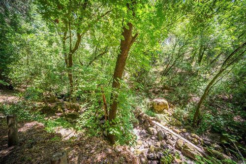 Tiny photo for 601 Sunnyside Road, Saint Helena, CA 94574 (MLS # 21928643)