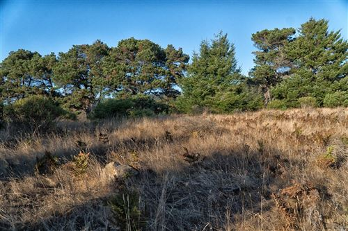 Photo of 41310 Tallgrass , The Sea Ranch, CA 95497 (MLS # 21723648)