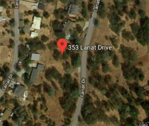 Photo of 353 Lariat Drive, Pope Valley, CA 94574 (MLS # 21918694)