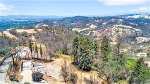 Photo of 3917 Skyfarm Drive, Santa Rosa, CA 95403 (MLS # 21807722)