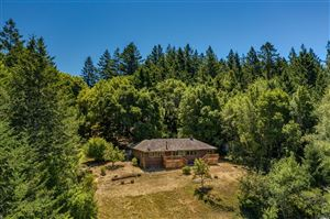 Photo of 17288 Taylor Lane, Occidental, CA 95465 (MLS # 21918801)