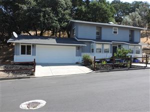 Photo of 1074 Headlands Drive, Napa, CA 94558 (MLS # 21921802)