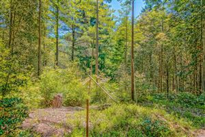 Photo of 22090 Lyons Court, Timber Cove, CA 95450 (MLS # 21815829)