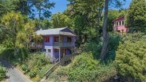 Photo of 11054 Highway 1 Road, Jenner, CA 95450 (MLS # 21918888)