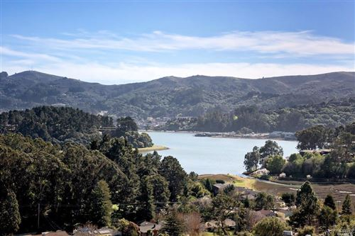Photo of 86 Milland Drive, Mill Valley, CA 94941 (MLS # 22003949)