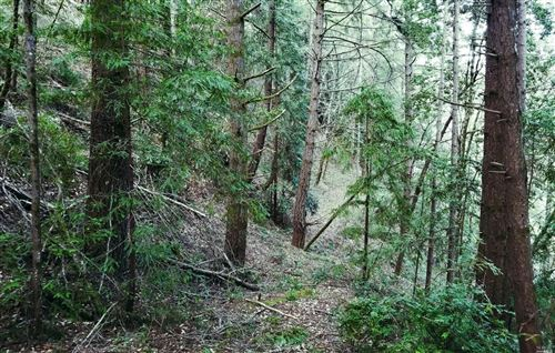 Photo of 0 Hwy 116 , Guerneville, CA 95446 (MLS # 21911970)