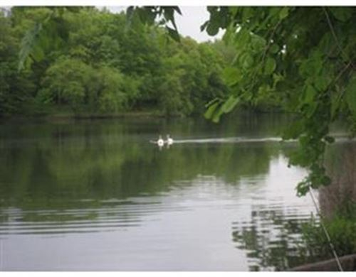 Tiny photo for 99 Pond Avenue #509, Brookline, MA 02445 (MLS # 72900243)