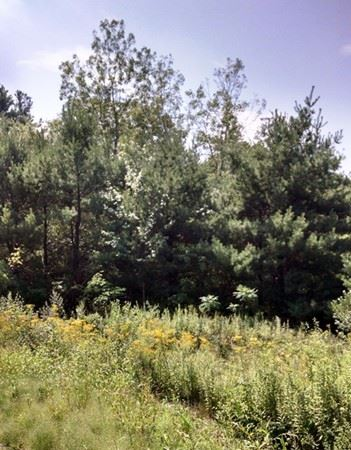 Photo of Lot 1 Oakhurst Road, Sutton, MA 01590 (MLS # 72053338)