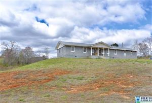 Photo of 810 CO RD 67, RANBURNE, AL 36273 (MLS # 844163)