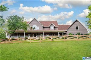Photo of 7476 BEAR CREEK RD, STERRETT, AL 35147 (MLS # 860187)