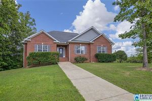 Photo of 10 SHADY LN, LINCOLN, AL 35096 (MLS # 856232)