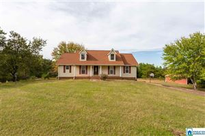 Photo of 1520 SAWYER MOUNTAIN RD, ONEONTA, AL 35121 (MLS # 865259)