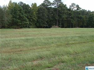Photo of 9385 MILLER RD #1, WARRIOR, AL 35180 (MLS # 863865)
