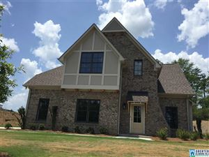 312 Willow Leaf Cir, Wilsonville, AL 35186 - #: 820880