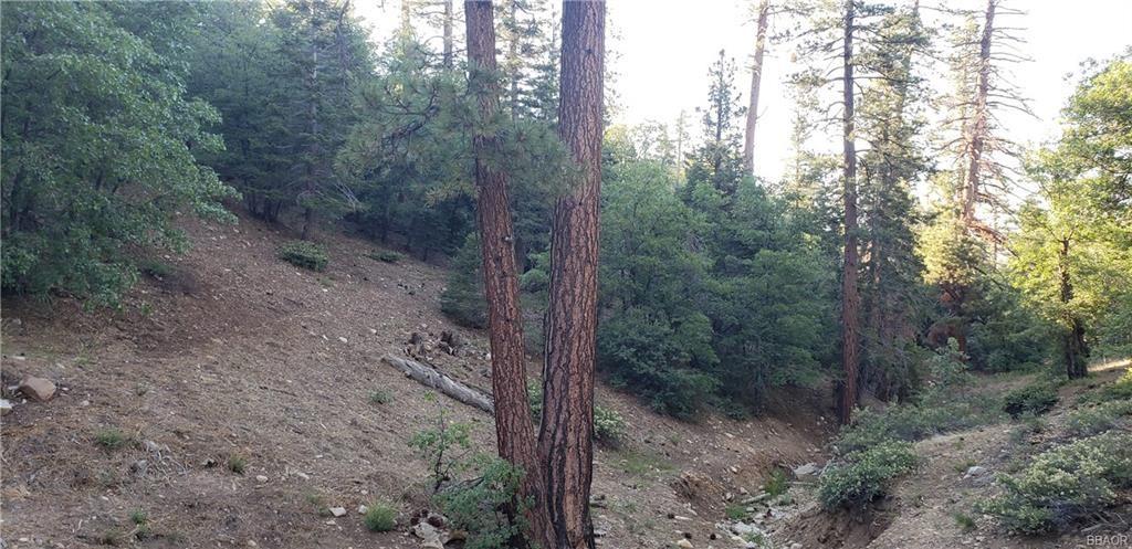 Photo of 1581 Columbine, Big Bear Lake, CA 92315 (MLS # 32002022)
