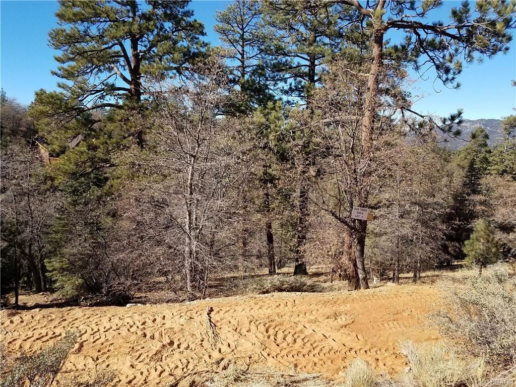 Photo of 0 Klamath, Big Bear Lake, CA 92315 (MLS # 32100034)