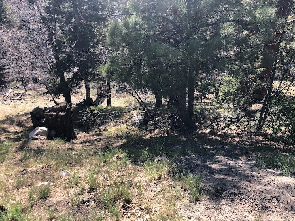 Photo of 1280 Ridge Road, Fawnskin, CA 92333 (MLS # 32104045)