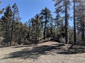 Photo for 557 Division Drive, Big Bear City, CA 92314 (MLS # 32000087)