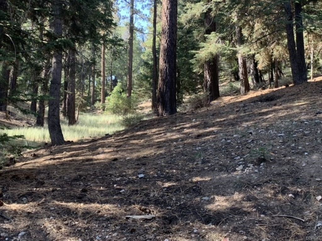 Photo of 0 Sprague Lane, Big Bear Lake, CA 92315 (MLS # 32108133)