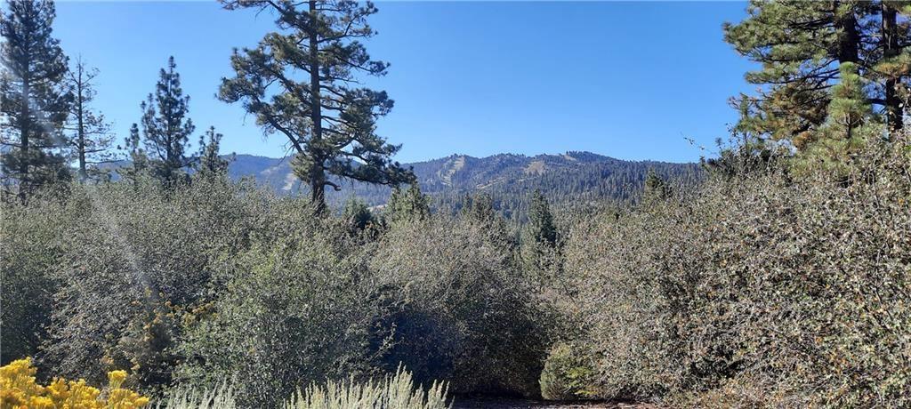 Photo of 42830 Cougar Road, Big Bear Lake, CA 92315 (MLS # 32108134)