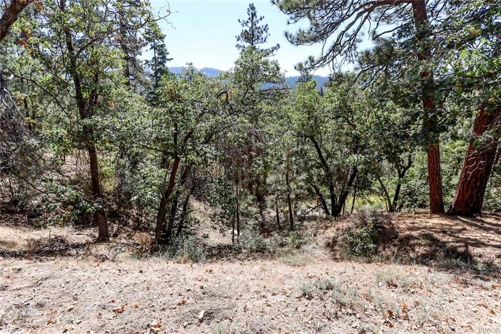 Photo of 0 Menlo Drive, Big Bear Lake, CA 92315 (MLS # 32004138)