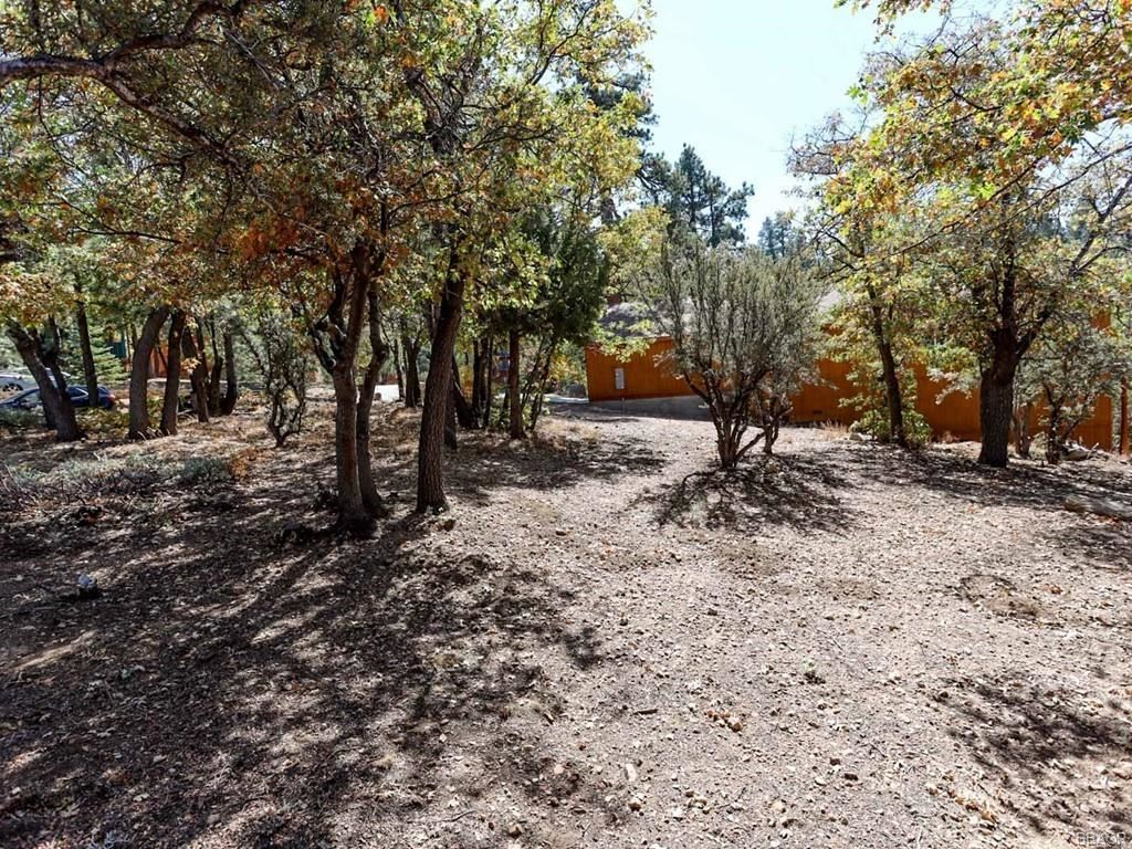 Photo of 1440 Klamath Road, Big Bear City, CA 92314 (MLS # 32004145)