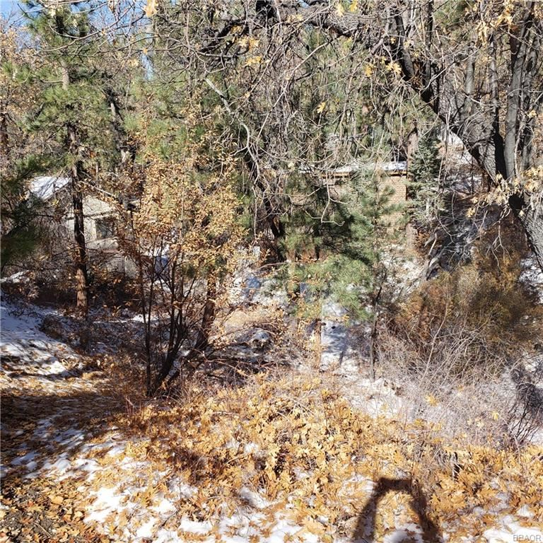 Photo of 1000 Butte Avenue, Big Bear City, CA 92314 (MLS # 32005282)