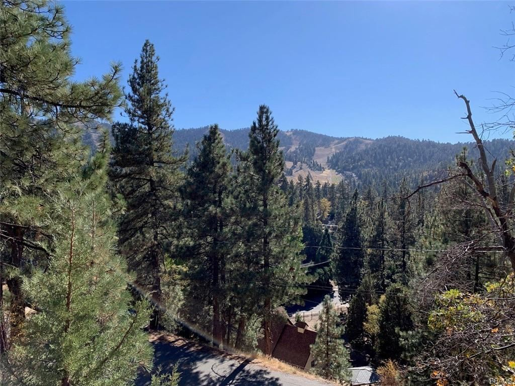 Photo of 865 Menlo Drive, Big Bear Lake, CA 92315 (MLS # 32005287)