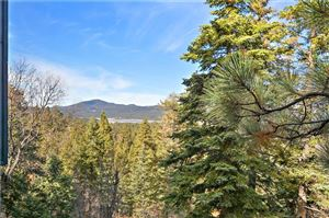 Photo of 1219 Pigeon Road, Big Bear Lake, CA 92315 (MLS # 31893316)