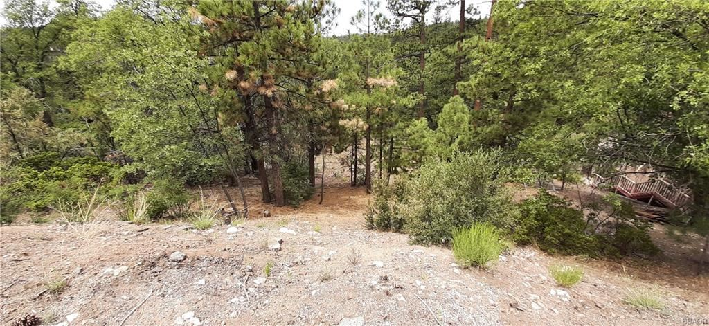 Photo of 0 Bruin Trail, Fawnskin, CA 92333 (MLS # 32105472)