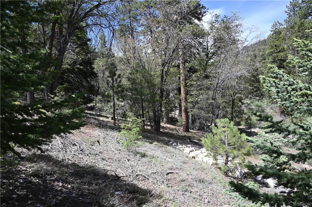 Photo of 1286 Fawnskin Drive, Fawnskin, CA 92333 (MLS # 32008573)